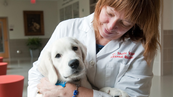NC State CVM Dr. Shelly Vaden with golden retriever pup
