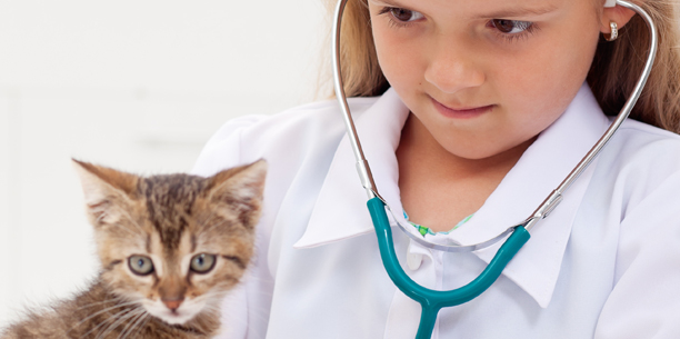 Young Girl Examaning Cat