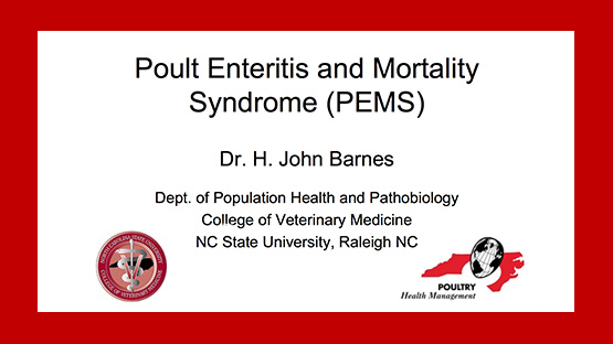 Cover of PEMS Presentation