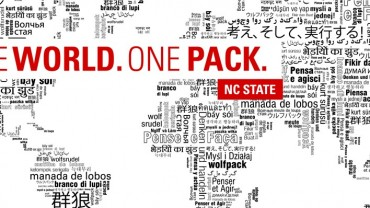 One world One Pack graphic