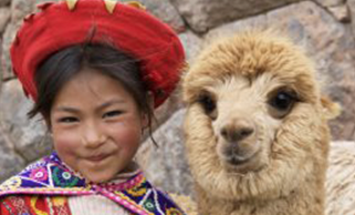 young South American native girl with llama