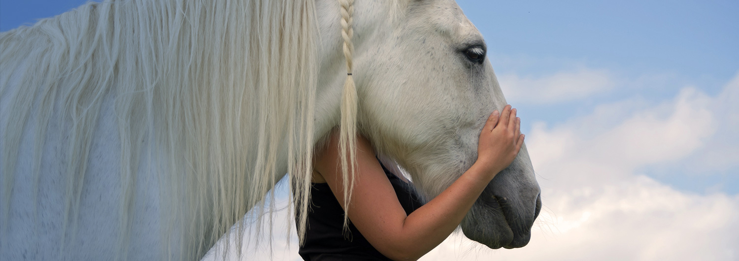 woman embracing horse