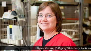 Robin Lazaro, Veterinary Health Complex, ICU