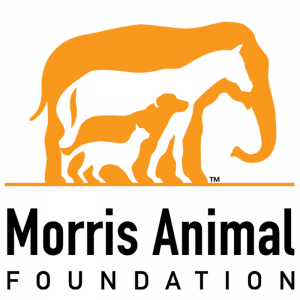 Logo image of elephant horse and dog