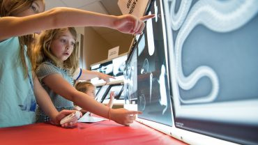 Children interacting with displays at CVM annual open house