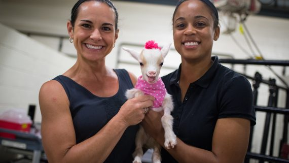 two women holding baby goat