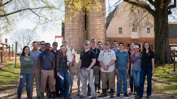 Ft. Bragg's 83rd Civil Affairs Battalion with CVM Faculty. Photo by Nathan Latil/NC State Veterinary Medicine