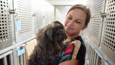 Sara Bennett volunteers with shelter dogs.