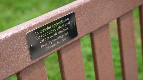 bench with plaque