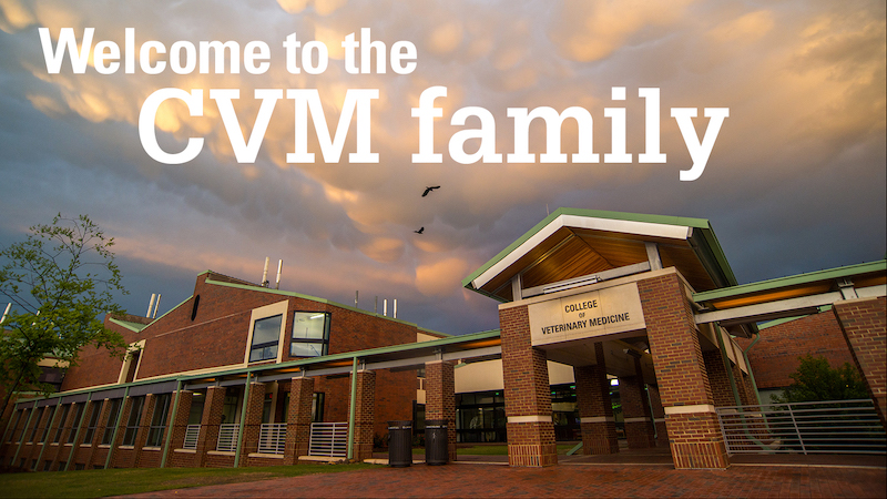 New to the CVM Family
