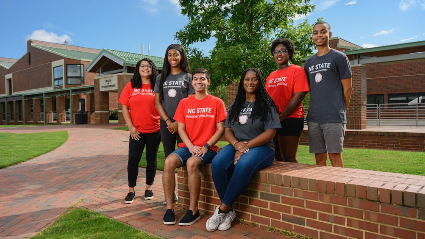 Inclusion, diversity and NC State College of Veterinary Medicine