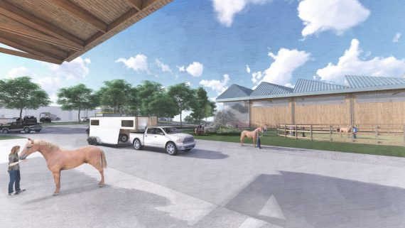 equine facility rendering
